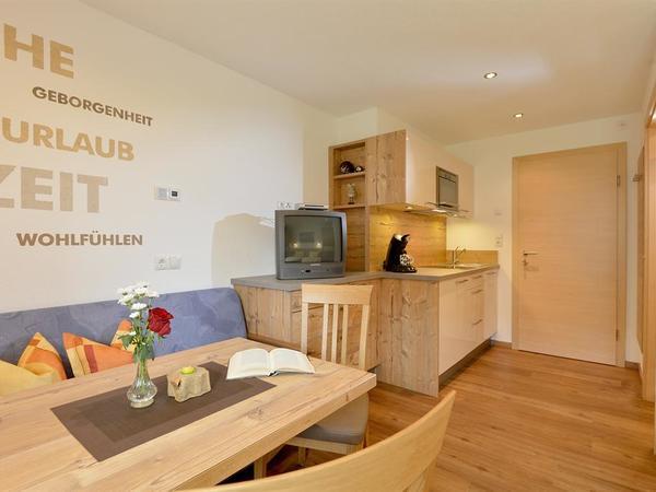 Apartment 1/1