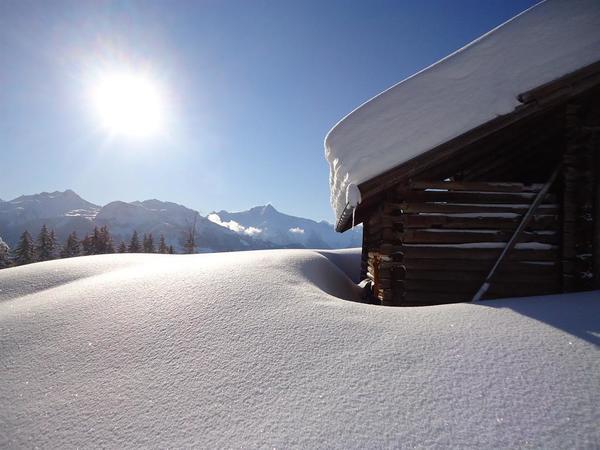Winter - Berge - Sonne - Schnee