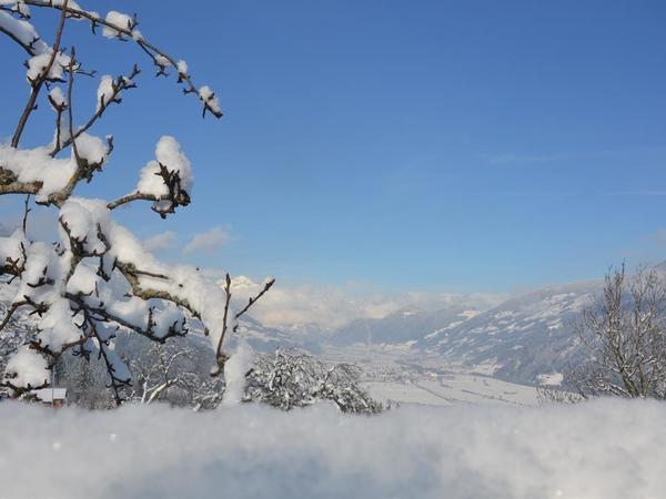 Panorama Zillertaler Bergwelt