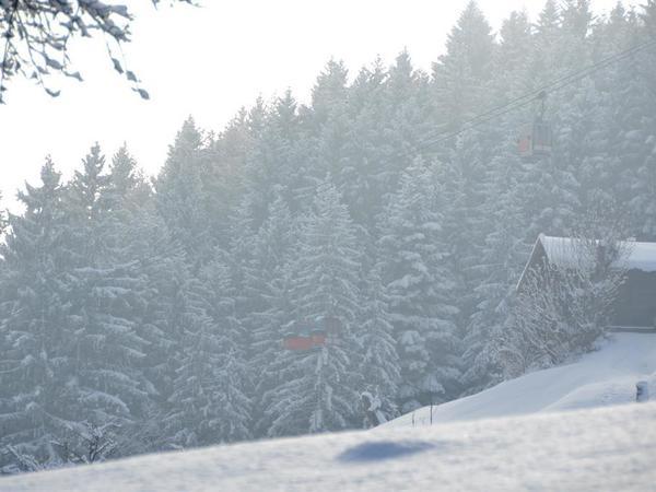 Skioptimal Hochfügen- Hochzillertal