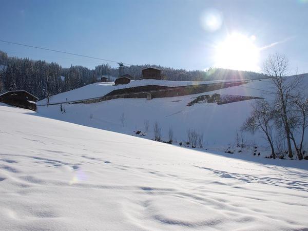 Winterausblick