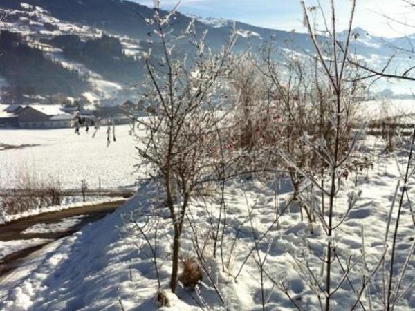 Stumm_Zillertal_Winterwanderung (478x640)