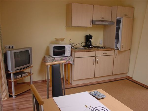 Apartment Gerlosstein Kochnische