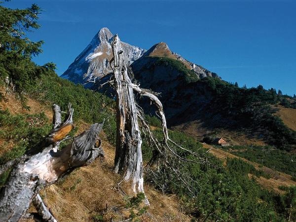 Naturpark_Zillertaler Alpen