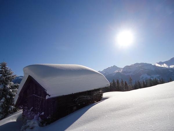 Schnee, Sonne, Berge