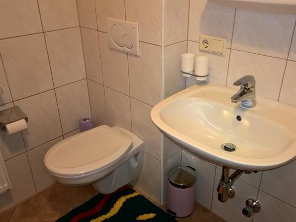 Shower_Toilet 1