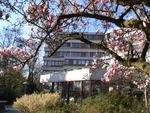 LFI Hotel/Landwirtschaftskammer G\u00e4stehaus GmbH Magnolienbl\u00fcte