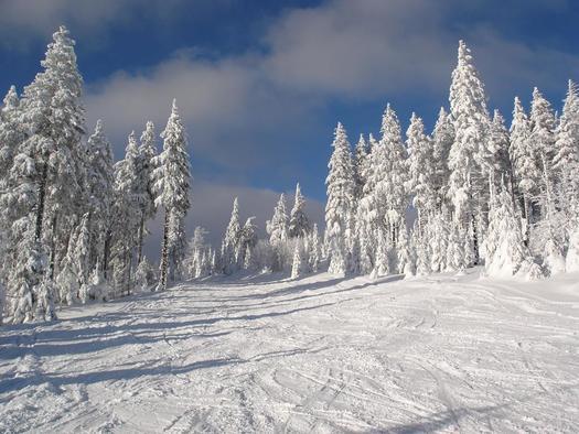 Winter am Schilift (18)