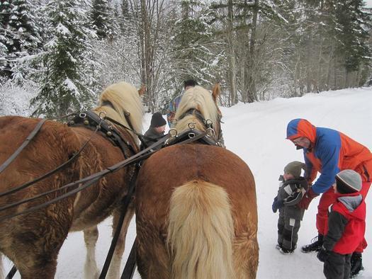 Pferdekutschenfahrt (© Leslie Sedlak)
