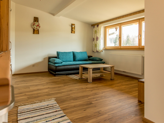 Wohnbereich mit Couch und Tisch, seitlich ein großes Fenster. (© Mayrhofer)