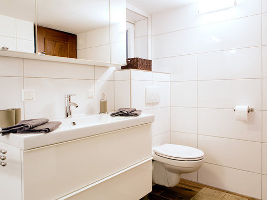 Bathroom with wash basin and cabinet, mirror cabinet, with toilet. (© Potocnik)