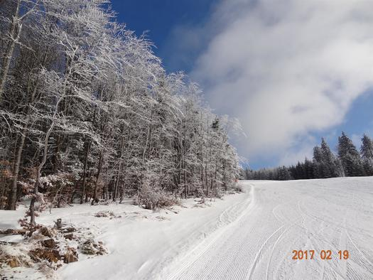 tief verschneit im Winter (© privat)