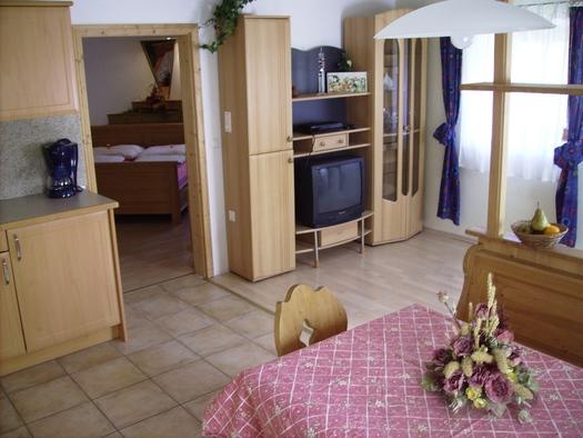 Wohnraum mit Küche Wohnung 1