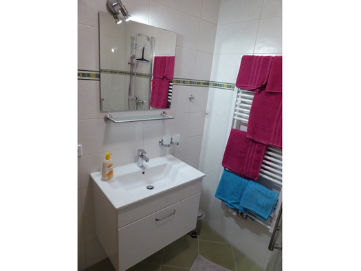 Second bathroom with lavaboy, on the right heating with towels. (© Mayrhofer)