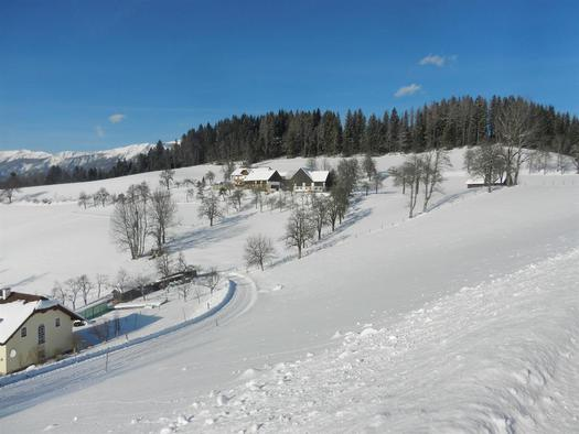 Panoramablick zum Moosgierler