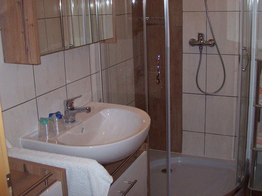 On the side you have a sink with a mirror cabinet. In the Background the shower and towels are visible. (© Birglechner)