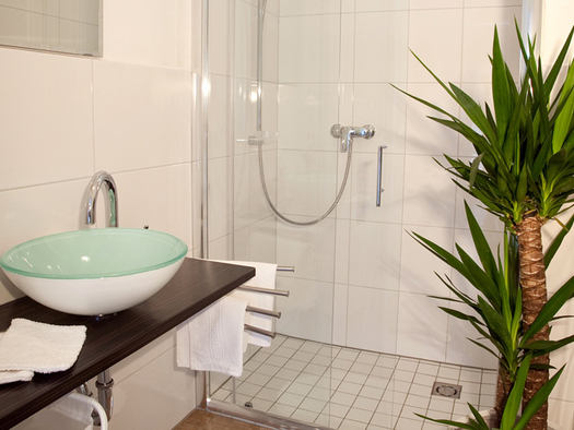 bathroom with a palm, sink, shower in the background. (© Wieneroither)