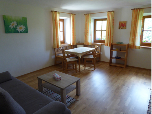 Im Vordergrund  die Couch mit einem kleinen Tisch, Holzboden mit Teppich, im Hintergrund drei Fenster mir Vorhängen und Essecke mit Bänken und zwei Stühlen, ein Regal. (© Mayrhofer)