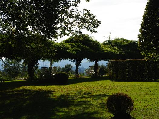 Schlosspark. (© TV Pfarrkirchen)