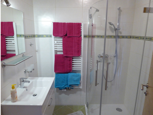 Bathroom with on the right the shower, on the backside the towelheating with towels and on the left the lavaboy and the mirror. (© Mayrhofer)