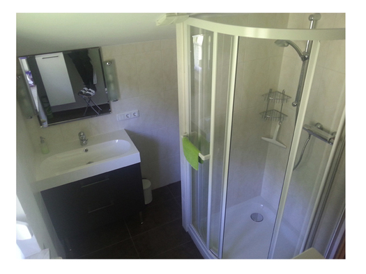 bathroom with sink, mirror and shower. (© Ellmauer)