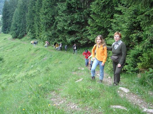 Aufstieg entlang des Märchenwanderweges zur Schafbachalm (© Tourismusverband Faistenau)