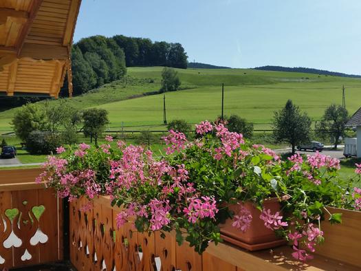 Balkon, Blumen, im Hintergrund Landschaft. (© Tourismusverband MondSeeLand)