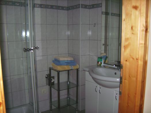 Badezimmer mit Dusche, im Hintergrund Ablageregal mit Handtücher, seitlich Waschbecken, Spiegel. (© Niederbrucker)