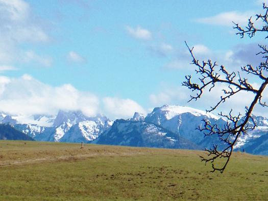 Ausblick auf die Felder, im Hintergrund die verschneiten Berge. (© Schafleitner-Kroiß)
