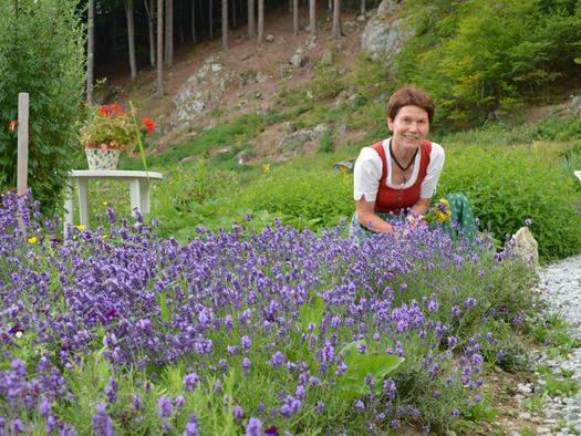 Kräutertage im Böhmerwald