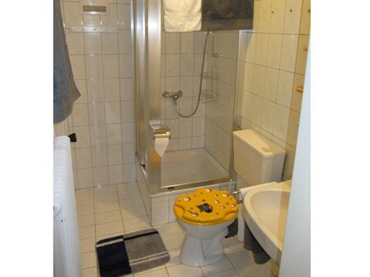 Bathroom with shower, toilet and sink. (© Bauernhof Schink)
