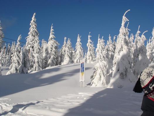 winter 2005 im böhmerwald-wwwhochfichtat 021