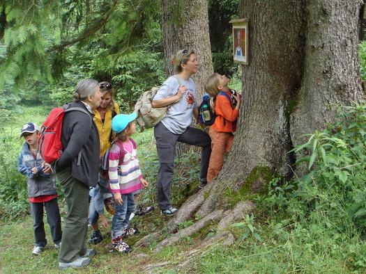Märchenwanderweg zur Schafbachalm (© Tourismusverband Faistenau)