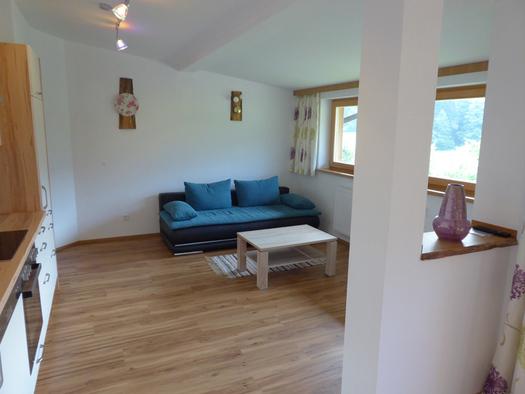 Links die Küchenzeile, im Hintergrund die Couch mit Tisch und Teppich, rechts eine große Fensterfront und ein Raumteiler. (© Mayrhofer)