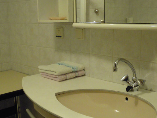 bathroom with sink. (© Jedinger)