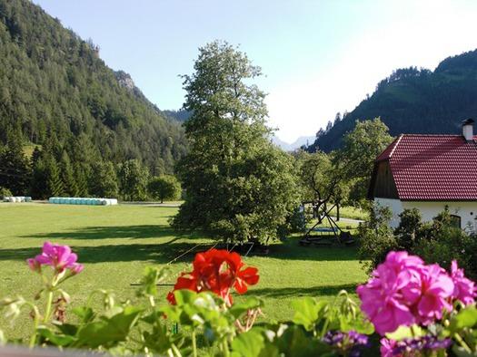 Aussicht aus Ferienwohnung Sommerwiese