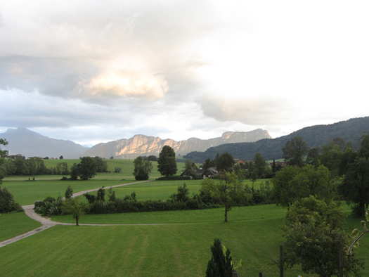View out of the window. Lawn with trees and in the background mountains. (© Bauernhof Schink)