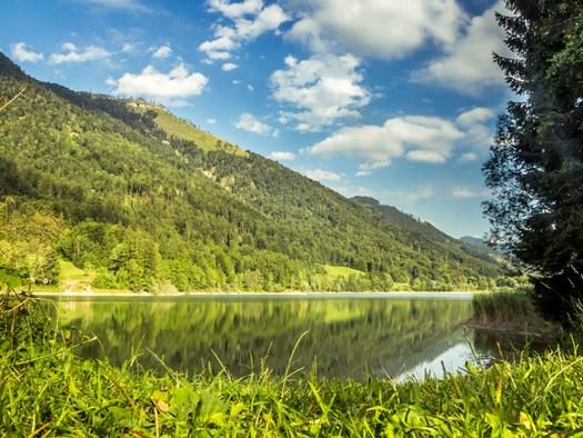 Naturbadesee Hintersee (© Tourismusverband Faistenau - M. Göttlich 50 Centimos)
