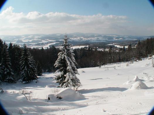 winter 2005 im böhmerwald-wwwhochfichtat 050