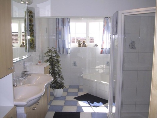 bathroom with shower, sink, tub, mirror, pot plant, window. (© Nußdorf)