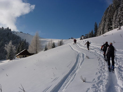 Aufstieg auf die Loibersbacher Höhe - Tourenschilehrpfad (© Tourismusverband Faistenau)