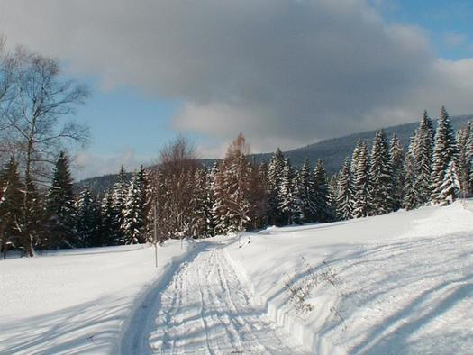 winter 2005 im böhmerwald-wwwhochfichtat 044
