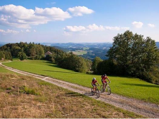 Mountainbike / © OÖ.Tourismus/Erber