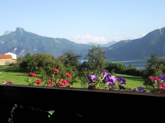 view from the balcony at the flowers, meadows, lake and mountains in the background. (© Spielberger)
