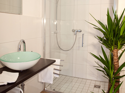 bathroom with shower, Palm on the side. (© Wieneroither)