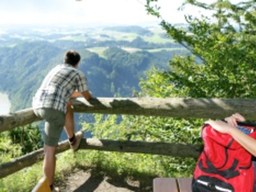 Wandern am Donausteig