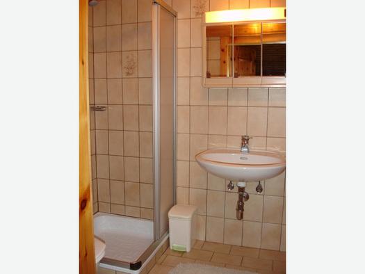 Badezimmer mit Dusche, Waschbecken, Spiegelschrank. (© Familie Laireiter)