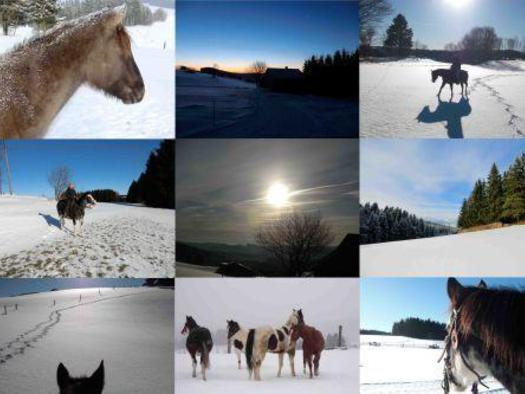 Urlaub Sammelbild Winter