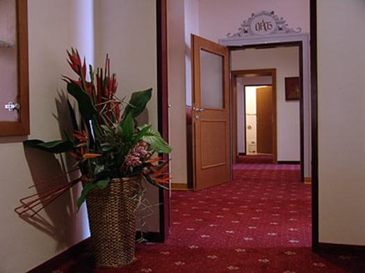 Hotel Alexandra Wels am Flur (© Hotel Alexandra & Bayrischer Hof)