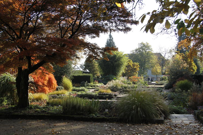 Herbst_Botanischer Garten